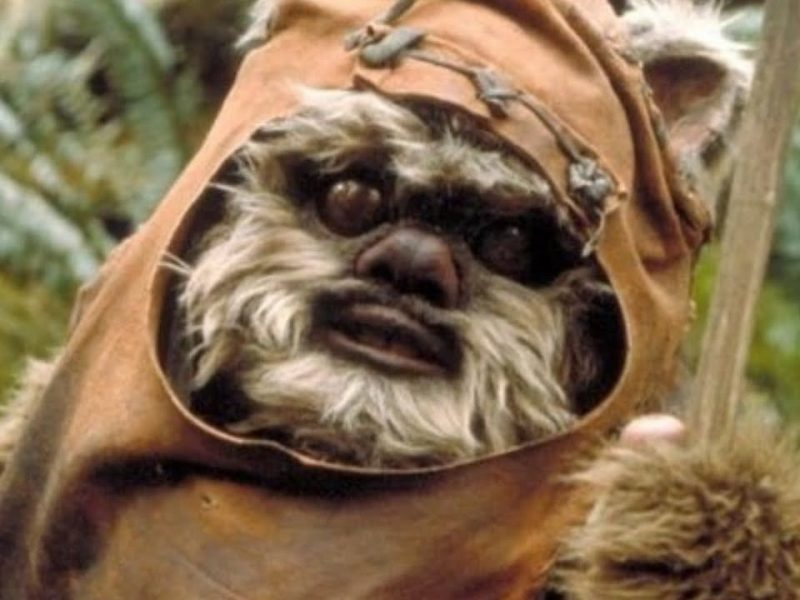 The Ewok Adventures Finally Explained