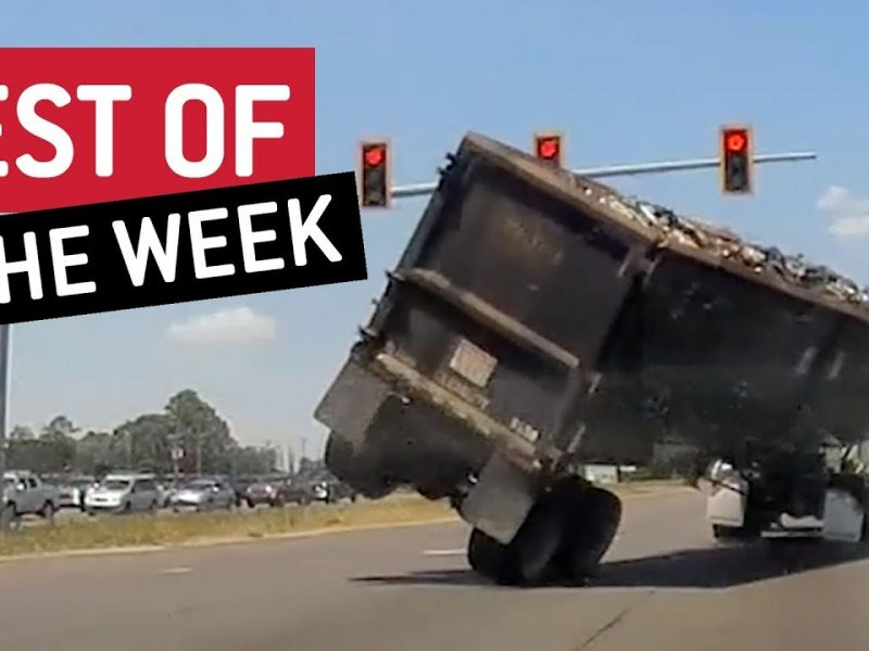 Best of the Week   Cut it Out!