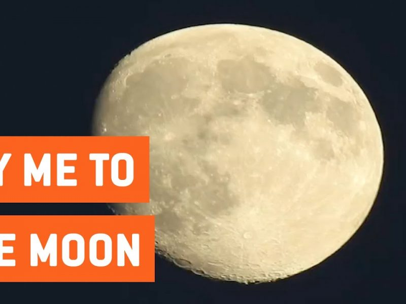 Nikon P900 Camera Zooms In On Moon